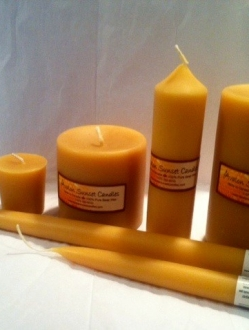 Beeswax 6″ x 1.5″ Pillar Candle Case – 12 units (P6)
