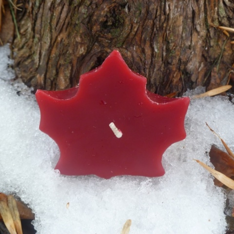 Maple Leaf – Cranberry(Red)