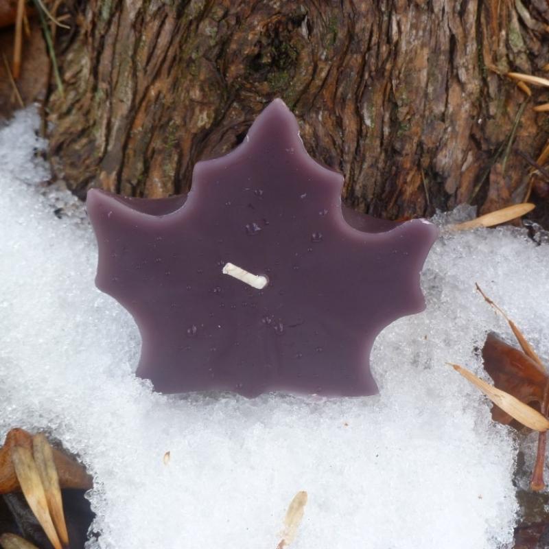 purple-mapleleaf